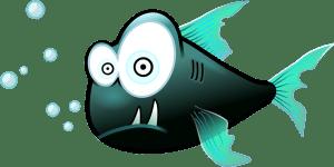 Fish facial recognition